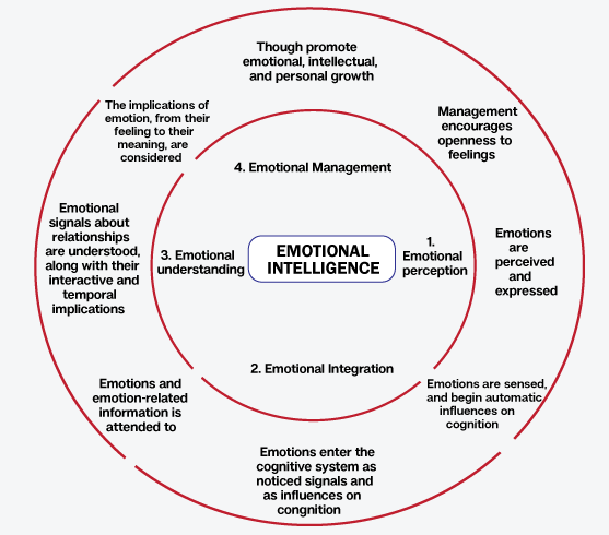 studies in emotional intelligence Emotional agility leadership  how to be human at work hbr's emotional intelligence series features smart, essential reading on the human side of professional life from the pages of .