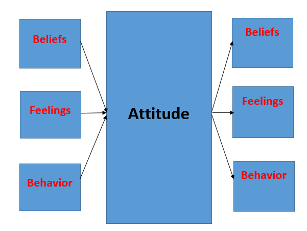 Predicting behavior by attitudes essay   1071 words | bartleby