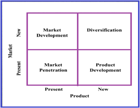Product diversification strategy