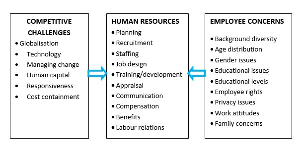hr challenges hr challenges in organizations human resource   framework of human resource