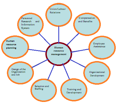 human resource management functions and activities