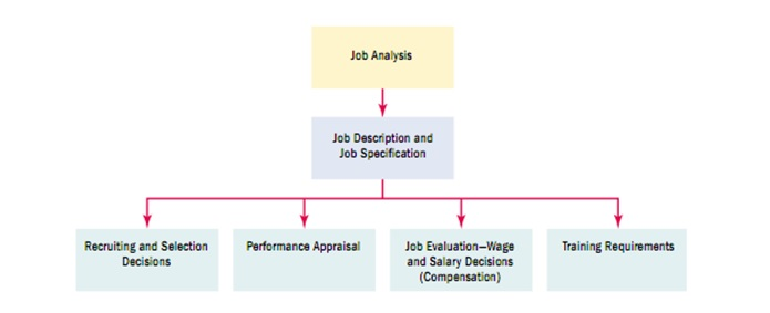 submit an analysis of the employee selection and performance appraisal methods Deliverable: submit an analysis of the employee selection and performance appraisal methods used in your workplace or in one with which you are familiar purpose: employee selection and assessment are important responsibilities for all managers.