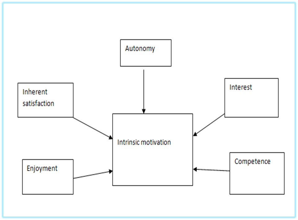 Individual Processes And Motivation Process Motivation Theories