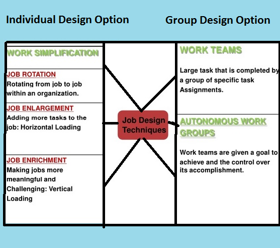 Job design and work organization